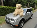 Used 2008 BMW X3 for sale in Surrey, BC