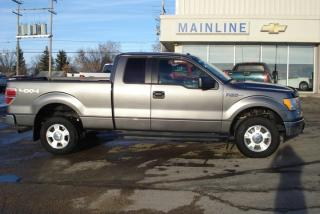Used 2012 Ford F-150 XLT | Crew Cab | 4x4 for sale in Watrous, SK