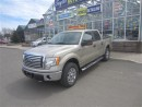 Used 2010 Ford F-150 XLT for sale in Moncton, NB