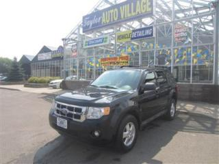 Used 2009 Ford Escape XLT Automatic 3.0L (400A) for sale in Moncton, NB
