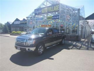 Used 2009 Ford F-150 XLT | Crew Cab | 4x4 for sale in Moncton, NB