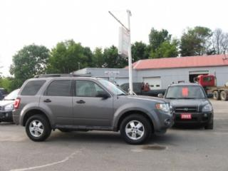 Used 2009 Ford Escape AWD for sale in Selwyn, ON