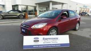 New 2014 Ford Focus SE for sale in Stratford, ON