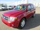 Used 2009 Ford Escape 4X4 XLT for sale in Innisfail, AB
