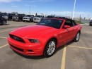 Used 2014 Ford Mustang V6 Premium convertible. Fire Engine RED for sale in Edmonton, AB