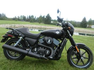 New 2015 Harley-Davidson Street 750 XG 750 STREET for sale in Blenheim, ON