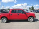 Used 2009 Ford F-150 FX4 for sale in Grande Prairie, AB