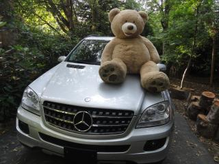 Used 2008 Mercedes-Benz ML 320 TURBO DIESEL for sale in Surrey, BC