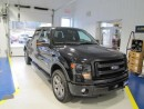 Used 2013 Ford F-150 FX4 for sale in Kaladar, ON