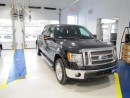 Used 2011 Ford F-150 XLT for sale in Kaladar, ON
