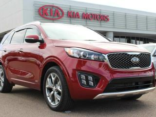 Used 2016 Kia Sorento SX 2.0T, HEATED AND COOLED SEATS, HEATED WHEEL, BACKUP CAM, NAVI, PANORAMIC SUNROOF, POWER TAILGATE, USB /AUX for sale in Edmonton, AB