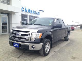 Used 2014 Ford F-150 XLT + Factory Trailer Tow Pkg! for sale in Sudbury, ON