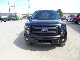 Used 2014 Ford F-150 FX4 for sale in Milton, ON