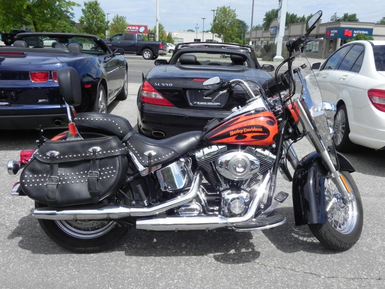 2010 Harley-Davidson Heritage Softail Classic Skull Edition