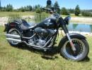 Used 2013 Harley-Davidson FAT BOY FLSTFB for sale in Blenheim, ON