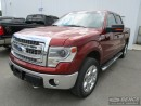 Used 2014 Ford F-150 for sale in Kaladar, ON