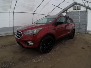 Used 2017 Ford Escape SE Sport for sale in Meadow Lake, SK
