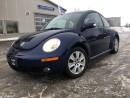 Used 2008 Volkswagen Beetle Trendline for sale in Selkirk, MB