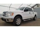 Used 2014 Ford F-150 XLT - XTR 145 for sale in Meadow Lake, SK