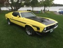 Used 1971 Ford Mustang 1971 Mustang Fastback for sale in Perth, ON