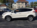 Used 2013 Ford Escape SEL for sale in Dunnville, ON