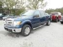 Used 2014 Ford F-150 XLT/XTR for sale in Cameron, ON