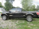 Used 2012 Ford F-150 for sale in Omemee, ON