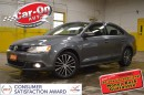 Used 2014 Volkswagen Jetta TDI HIGHLINE lEATHER sUNROOF for sale in Ottawa, ON
