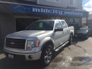 Used 2010 Ford F-150 FX4 for sale in Niagara Falls, ON