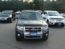 Used 2008 Ford Escape Limited for sale in Bloomfield, ON