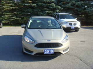 Used 2016 Ford Focus SE for sale in Bloomfield, ON