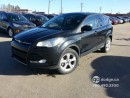 Used 2014 Ford Escape SE/ 1.6L ECOBOOST/ 4X4/ BACK UP CAMERA for sale in Edmonton, AB