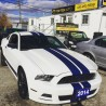 Used 2014 Ford Mustang Performance White custom Shelby Stripes for sale in Scarborough, ON