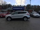 Used 2014 Ford Escape SE for sale in Flesherton, ON
