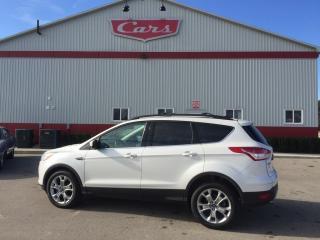 Used 2013 Ford Escape SEL for sale in Tillsonburg, ON