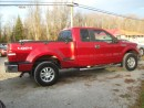 Used 2009 Ford F-150 XLT for sale in Fenelon Falls, ON
