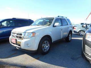 Used 2011 Ford Escape Limited for sale in Cameron, ON