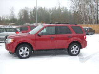 Used 2010 Ford Escape XLT for sale in Fenelon Falls, ON