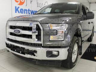 Used 2016 Ford F-150 XLT 4x4- Grey on grey with keyless entry for sale in Edmonton, AB