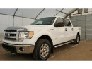 Used 2014 Ford F-150 F150 for sale in Meadow Lake, SK