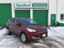 Used 2014 Ford Escape SE for sale in Thunder Bay, ON
