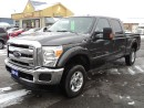 Used 2016 Ford F-250 XLT CrewCab 4X4 6.6ft Box for sale in Brantford, ON