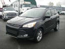 Used 2013 Ford Escape SE ECOBOOST for sale in Burnaby, BC