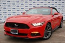 Used 2016 Ford Mustang GT Premium*Convertible*Nav for sale in Welland, ON