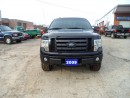Used 2009 Ford F-150 FX4 for sale in Milton, ON