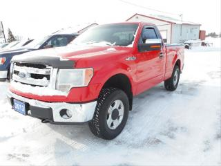 Used 2013 Ford F-150 XLT for sale in Cameron, ON