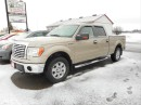 Used 2010 Ford F-150 XLT/XTR for sale in Cameron, ON