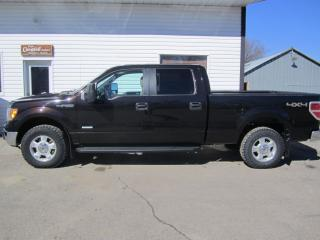 Used 2013 Ford F-150 XLT for sale in Melfort, SK
