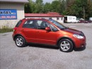 Used 2010 Suzuki SX4 Touring Hatchback for sale in Fenelon Falls, ON