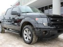 Used 2014 Ford F-150 for sale in Edmonton, AB